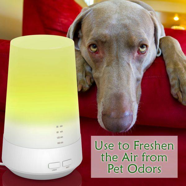 1000x1000_diffuser-pet-odors