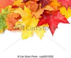 canstockphoto30215332_comp